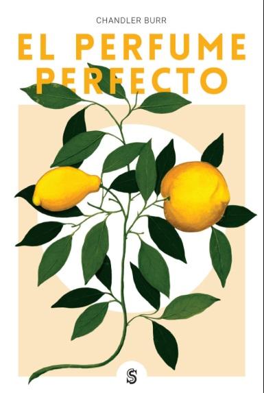 EL PERFUME PERFECTO 22,90€