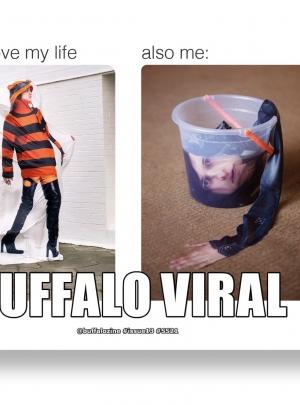 Buffalo Viral